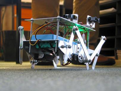 Photo of robotic spider