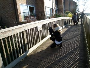 A young person crouches on a wooden bridge to take a photograph