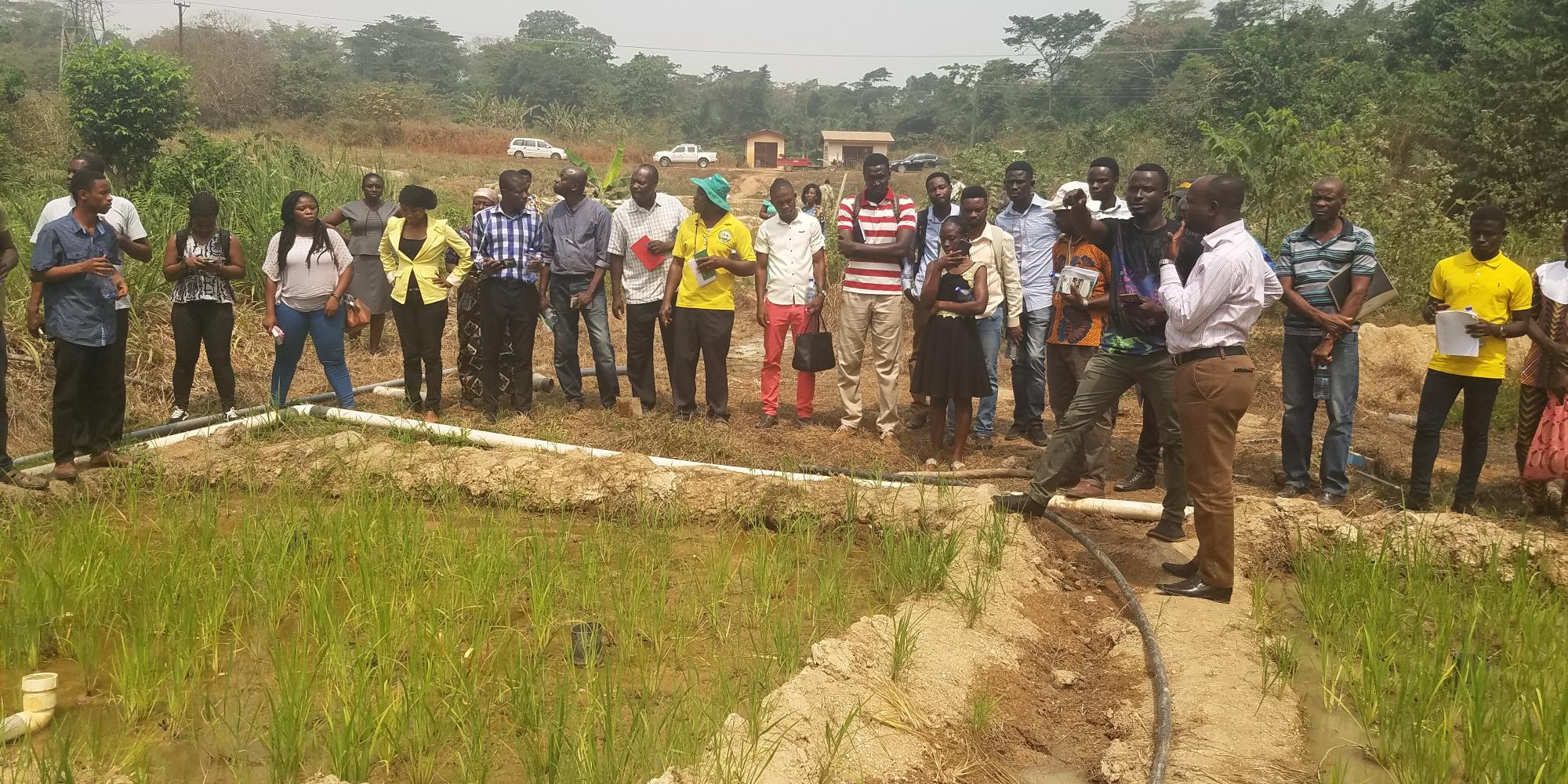 Demonstrating AWD to visitors at CRI Kumasi