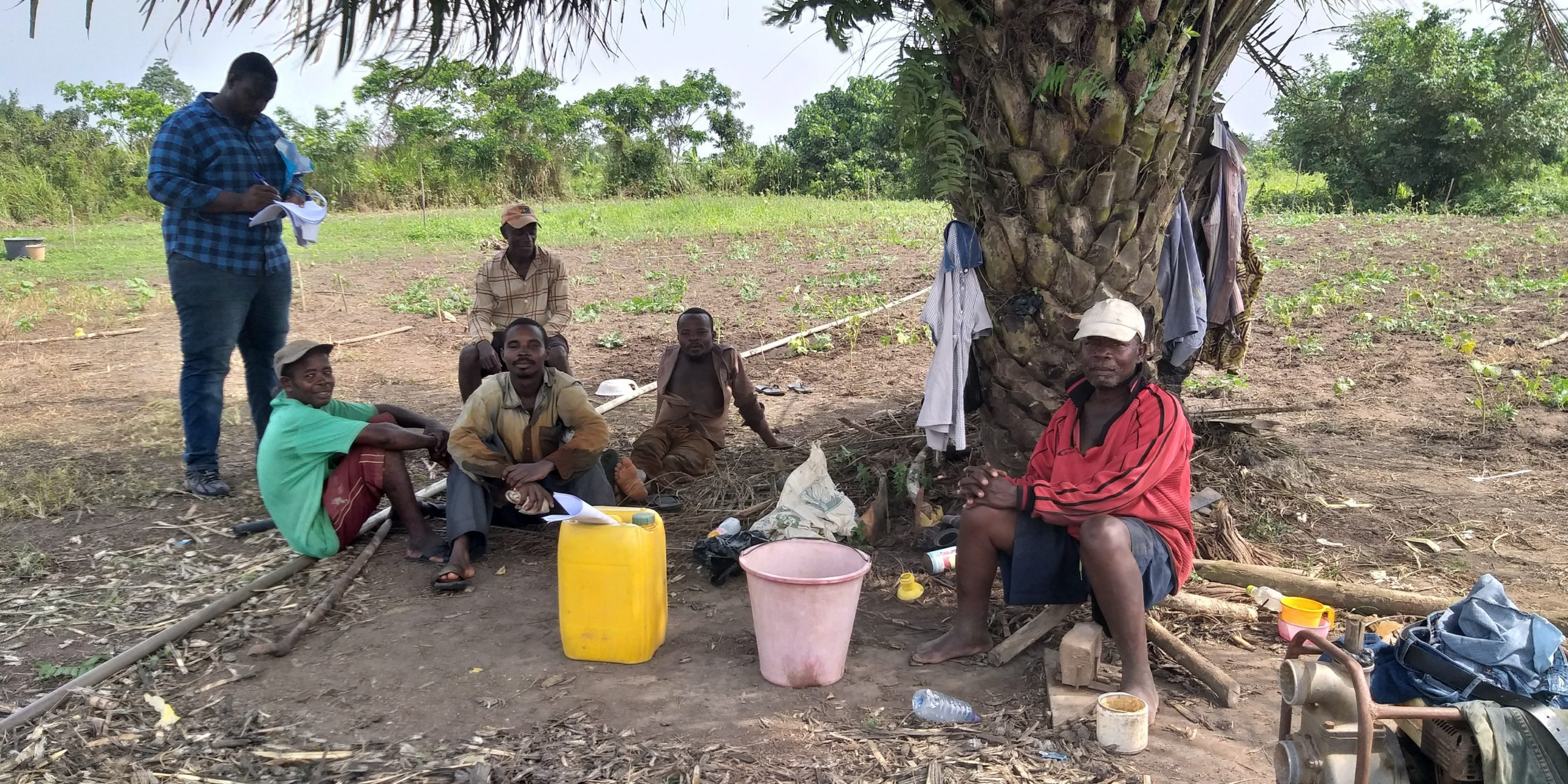 5 Selected interviews with individual farmers at Baifikrom, a community within the catchment area of Mankessim irrigation scheme