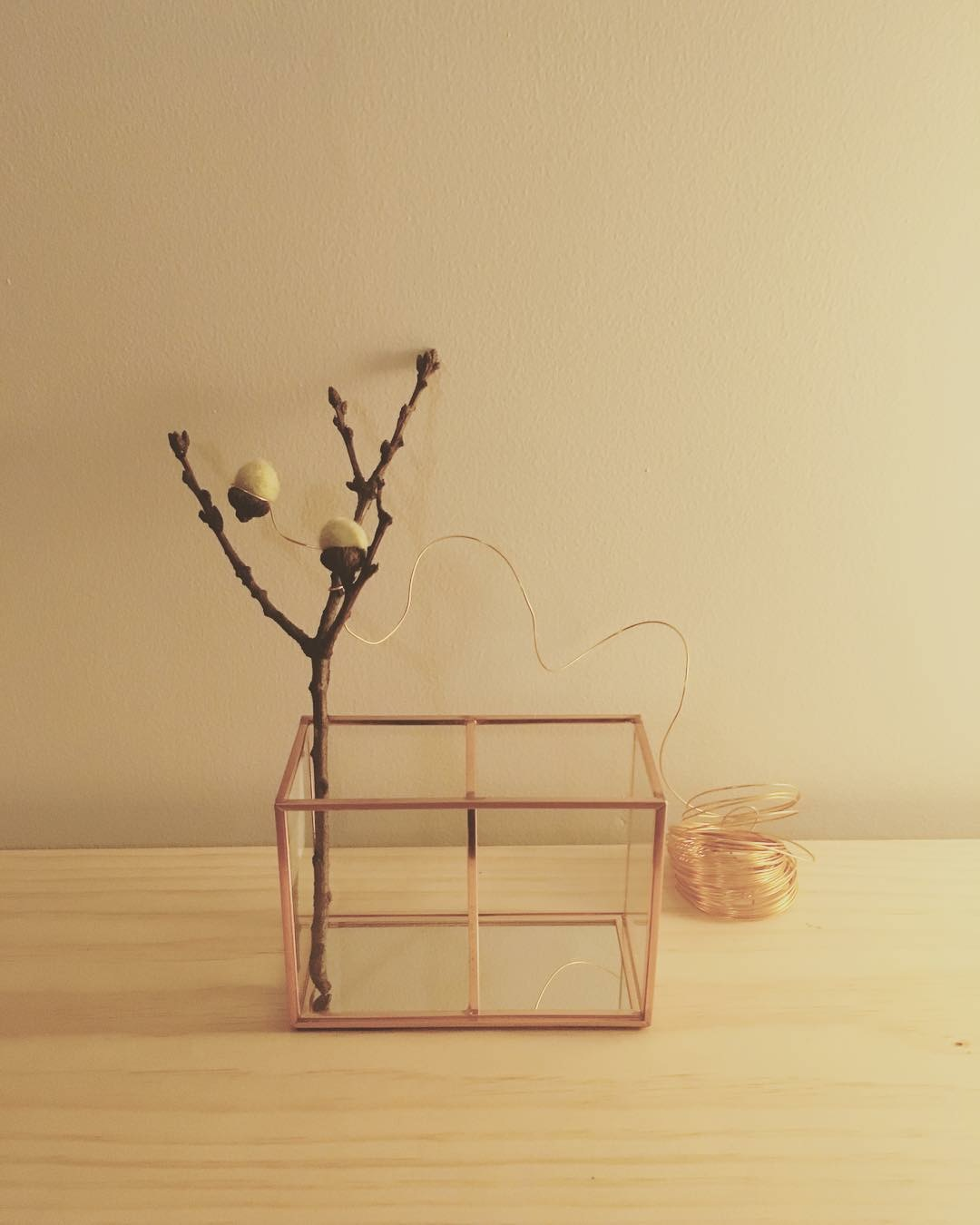 Small branch with wire.