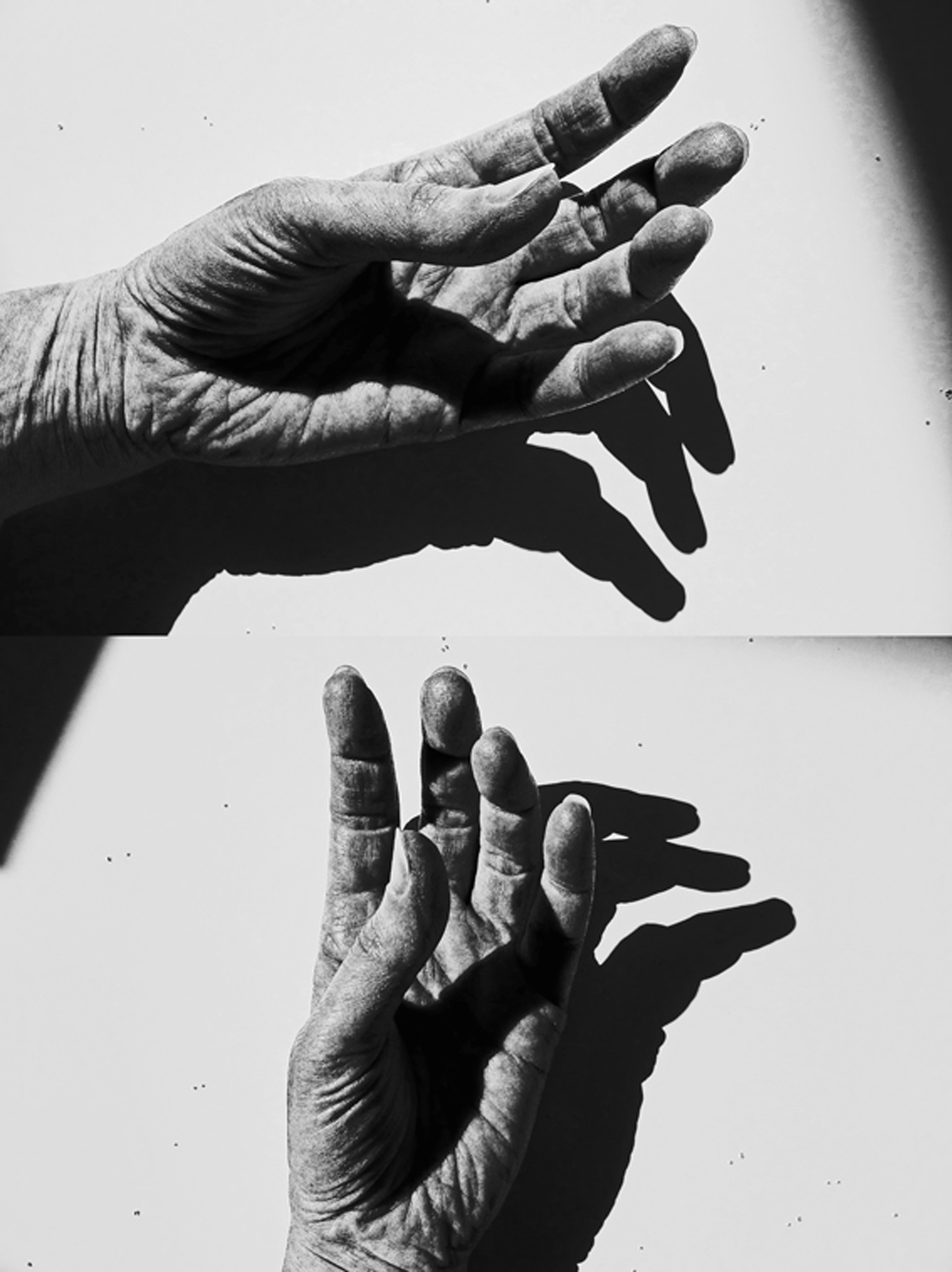 This image is a collage of two black and white photographs of a hand. The top half shows palm and slightly bent fingers horizontally, the bottom half vertically. The original was photographed in extreme light against white background, in order to achieve pronounced shadows. The latter appear more curved than the fingers themselves.