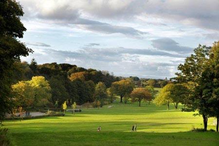 campus parkland